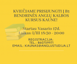 B1 GENERAL ENGLISH COURSE IN THE MORNING IN KAUNAS FROM 02.17